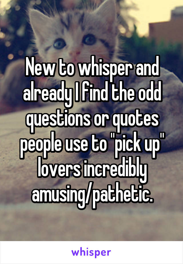"""New to whisper and already I find the odd questions or quotes people use to """"pick up"""" lovers incredibly amusing/pathetic."""