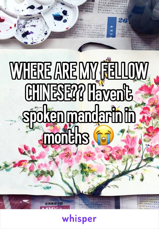 WHERE ARE MY FELLOW CHINESE?? Haven't spoken mandarin in months 😭