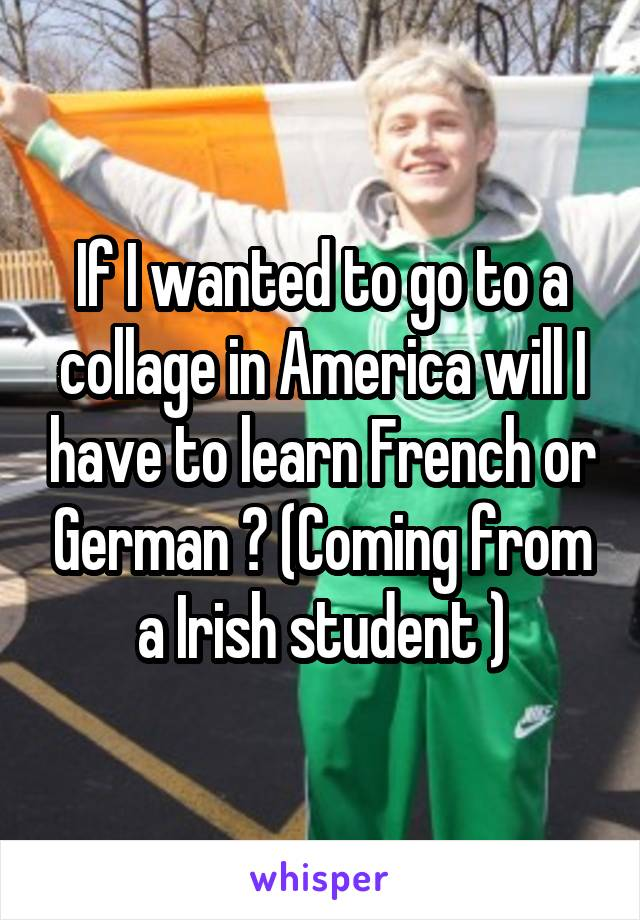 If I wanted to go to a collage in America will I have to learn French or German ? (Coming from a Irish student )