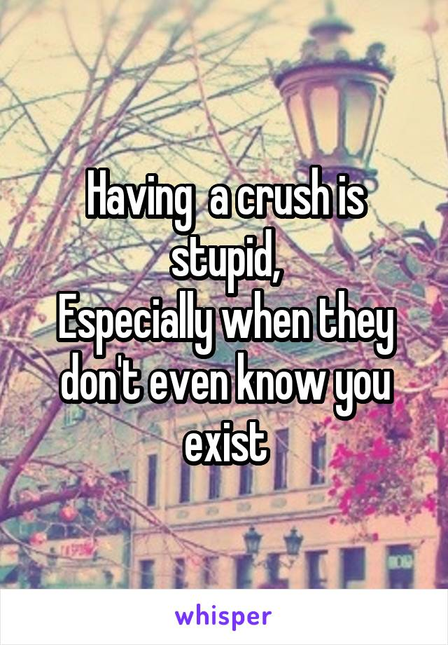 Having  a crush is stupid, Especially when they don't even know you exist
