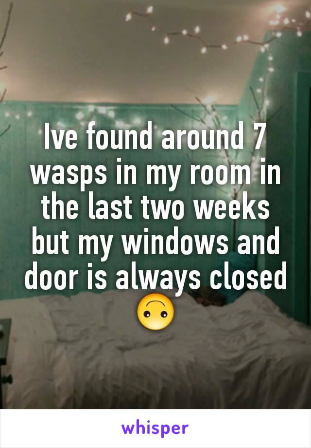 Ive found around 7 wasps in my room in the last two weeks but my windows and door is always closed 🙃