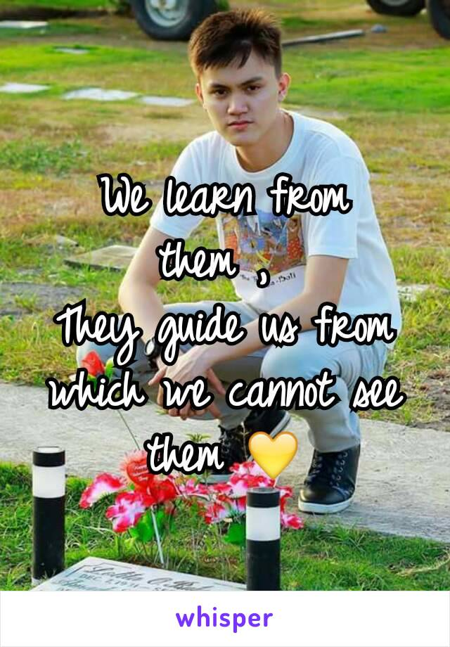 We learn from them ,  They guide us from which we cannot see them 💛