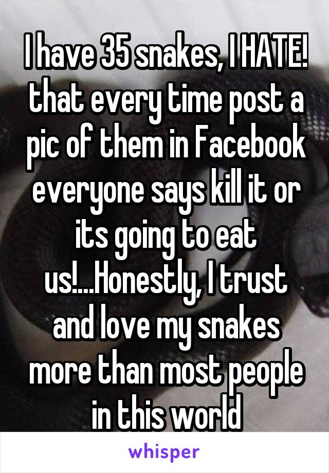 I have 35 snakes, I HATE! that every time post a pic of them in Facebook everyone says kill it or its going to eat us!...Honestly, I trust and love my snakes more than most people in this world