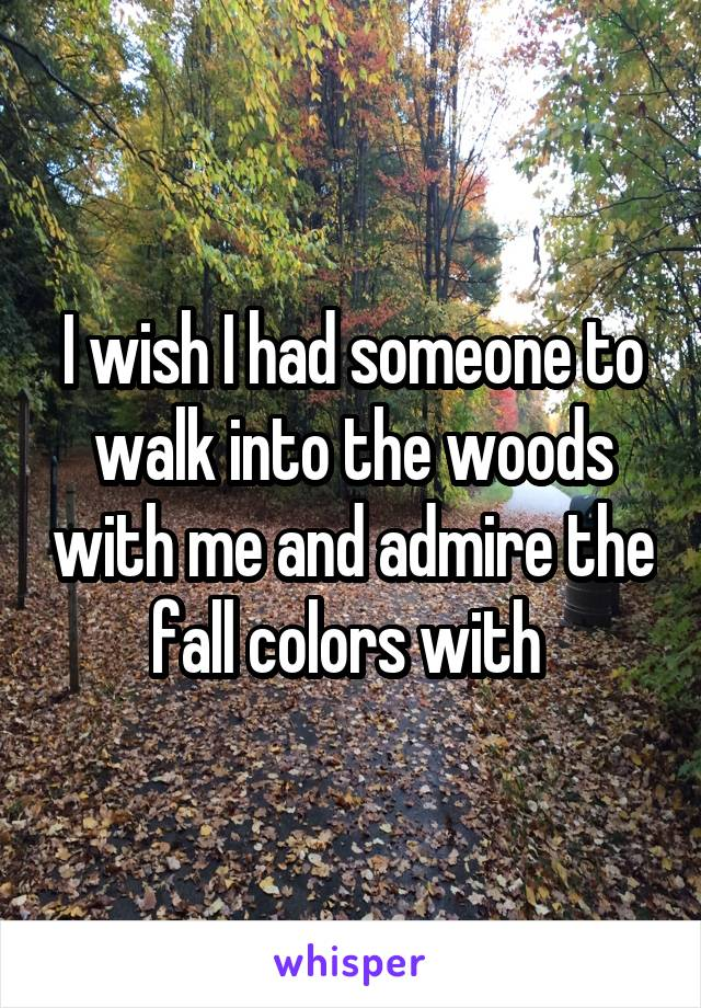 I wish I had someone to walk into the woods with me and admire the fall colors with