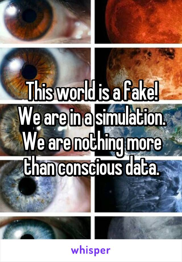 This world is a fake! We are in a simulation. We are nothing more than conscious data.