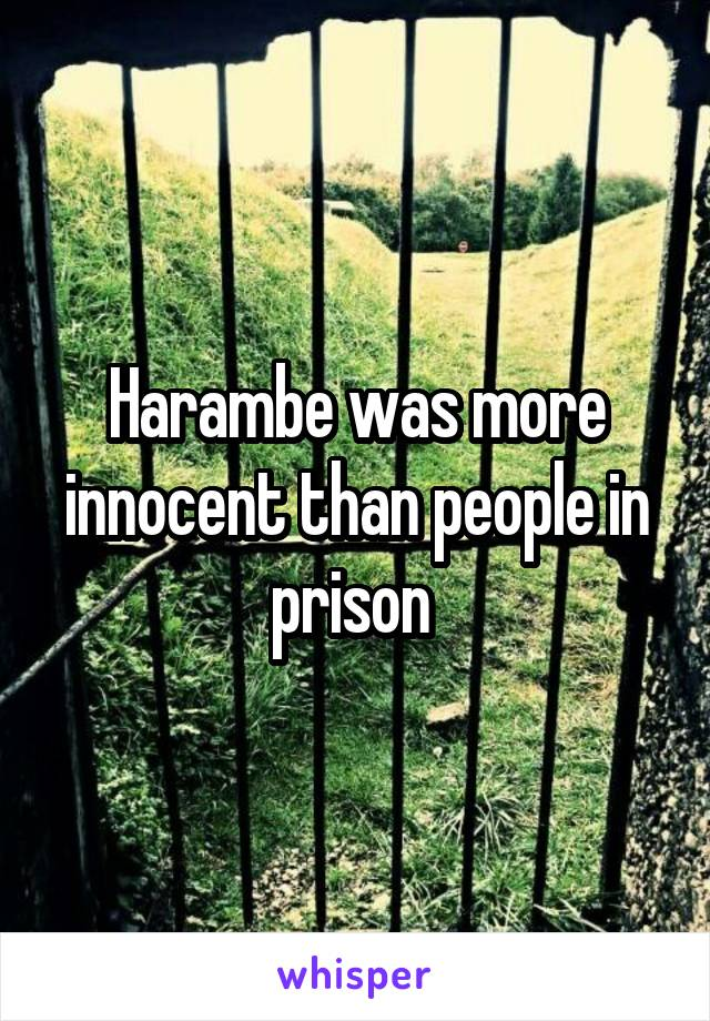 Harambe was more innocent than people in prison