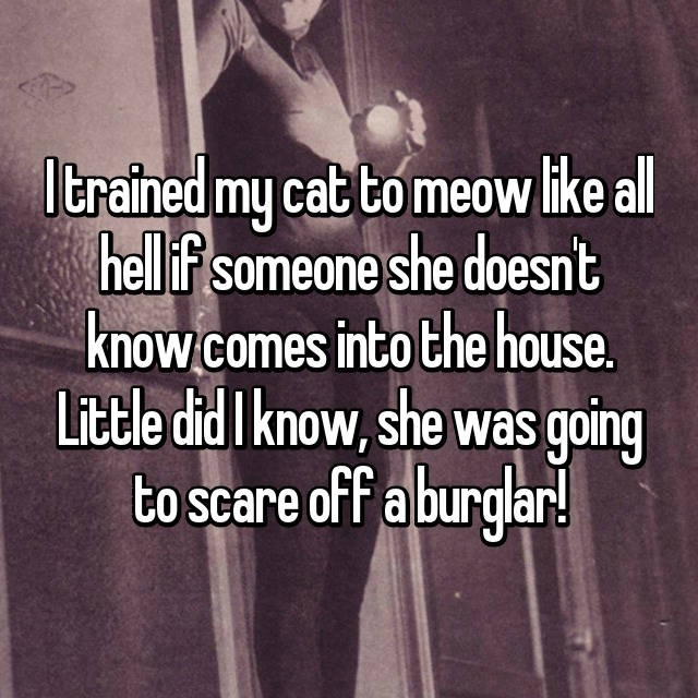 I trained my cat to meow like all hell if someone she doesn't know comes into the house. Little did I know, she was going to scare off a burglar!