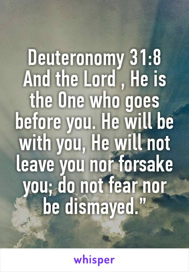 """Deuteronomy 31:8 And the Lord , He is the One who goes before you. He will be with you, He will not leave you nor forsake you; do not fear nor be dismayed."""""""