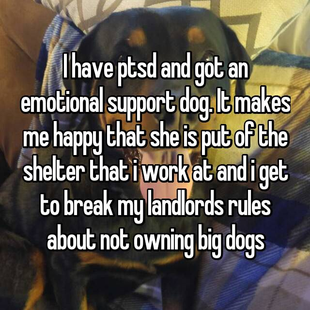 I have ptsd and got an emotional support dog. It makes me happy that she is put of the shelter that i work at and i get to break my landlords rules about not owning big dogs