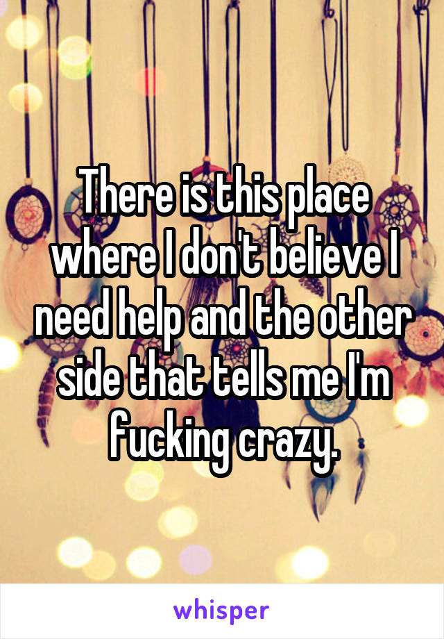 There is this place where I don't believe I need help and the other side that tells me I'm fucking crazy.