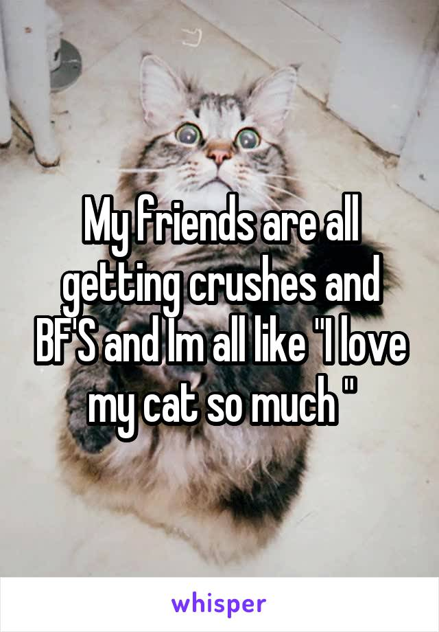 """My friends are all getting crushes and BF'S and Im all like """"I love my cat so much """""""
