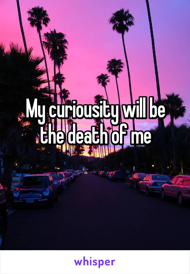 My curiousity will be the death of me