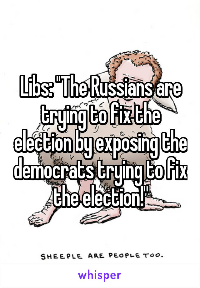 """Libs: """"The Russians are trying to fix the election by exposing the democrats trying to fix the election!"""""""