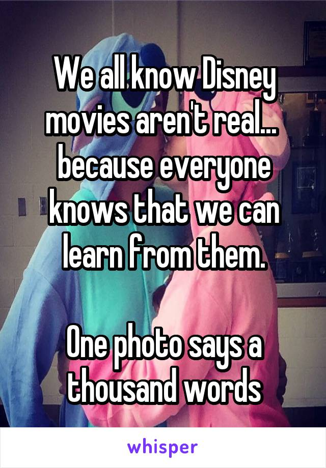 We all know Disney movies aren't real...  because everyone knows that we can learn from them.  One photo says a thousand words