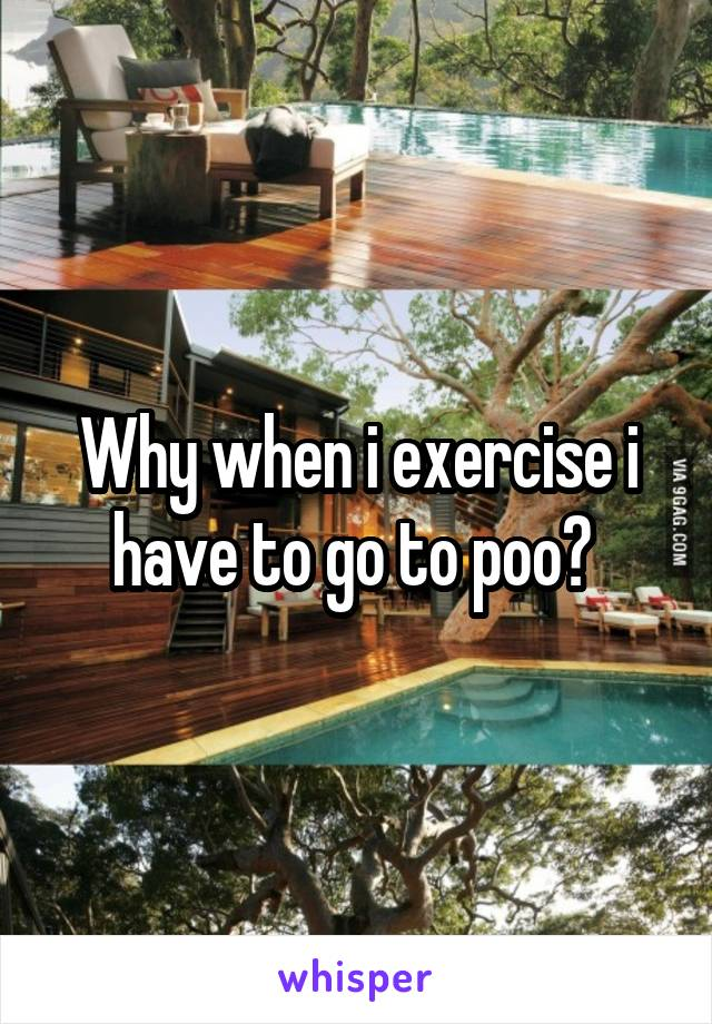 Why when i exercise i have to go to poo?
