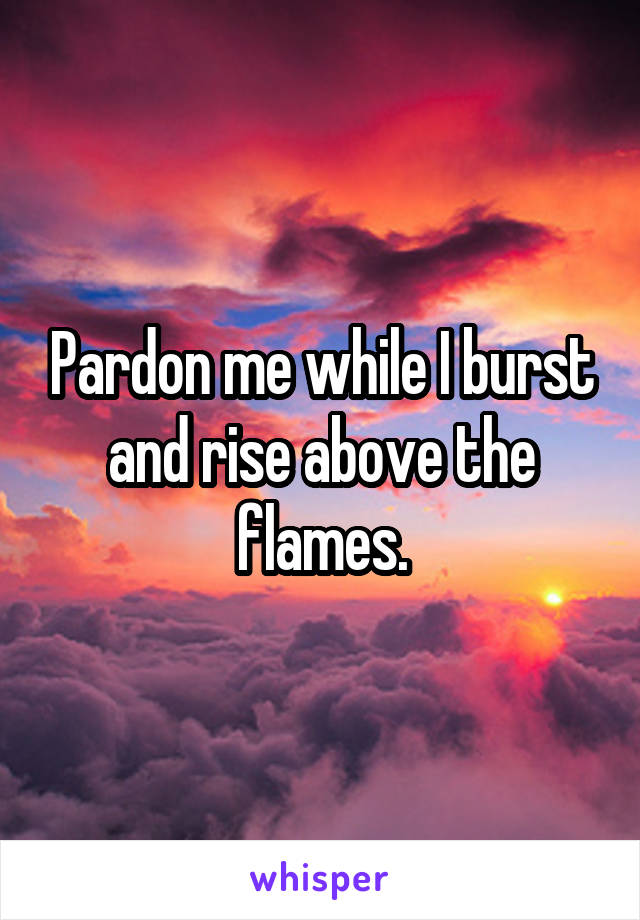 Pardon me while I burst and rise above the flames.