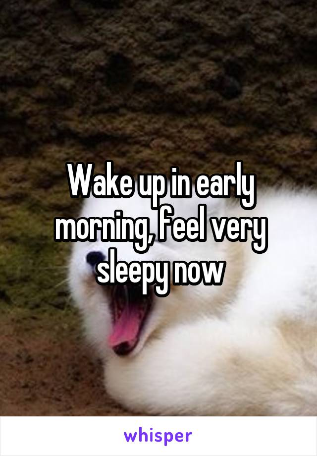 Wake up in early morning, feel very sleepy now