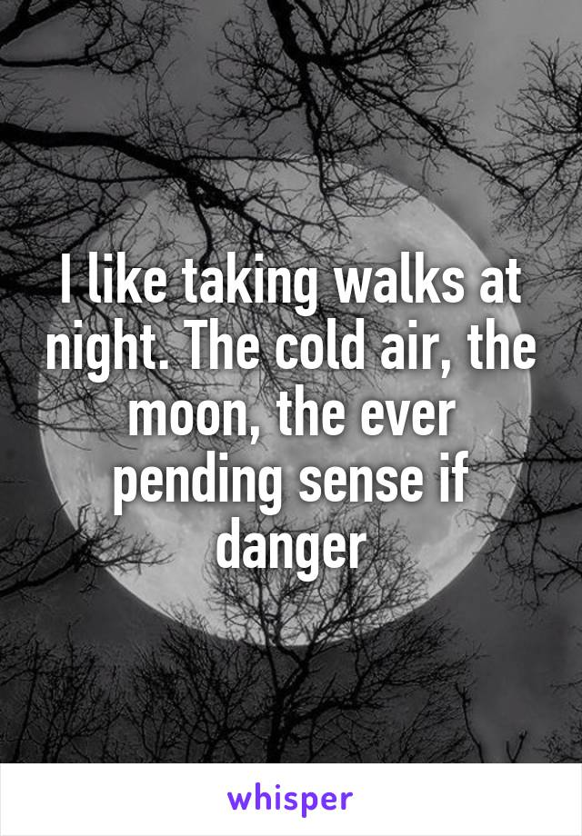 I like taking walks at night. The cold air, the moon, the ever pending sense if danger
