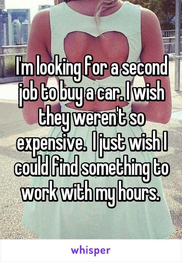 I'm looking for a second job to buy a car. I wish they weren't so expensive.  I just wish I could find something to work with my hours.