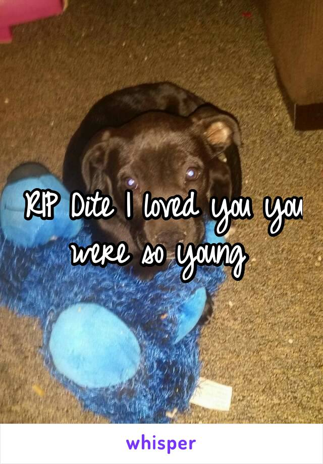 RIP Dite I loved you you were so young