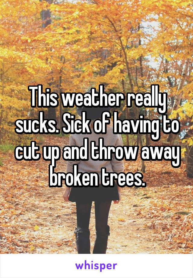 This weather really sucks. Sick of having to cut up and throw away broken trees.