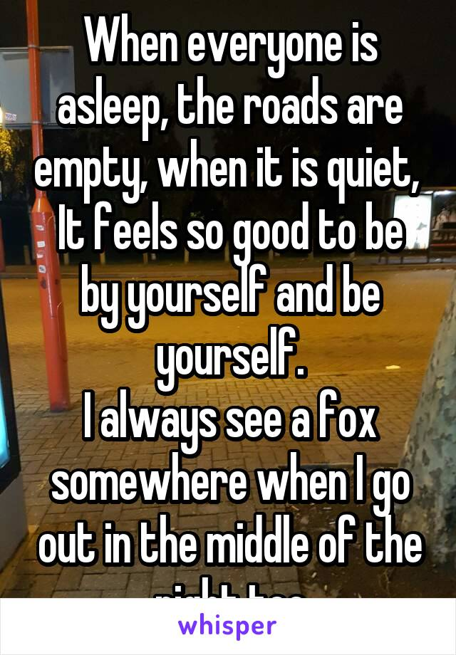When everyone is asleep, the roads are empty, when it is quiet,  It feels so good to be by yourself and be yourself. I always see a fox somewhere when I go out in the middle of the night too