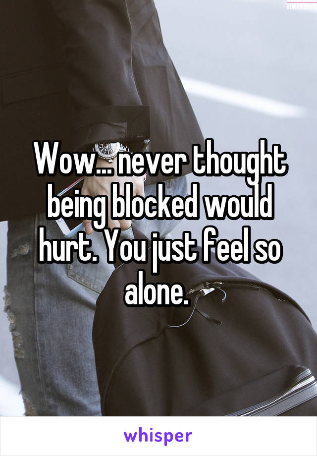 Wow... never thought being blocked would hurt. You just feel so alone.