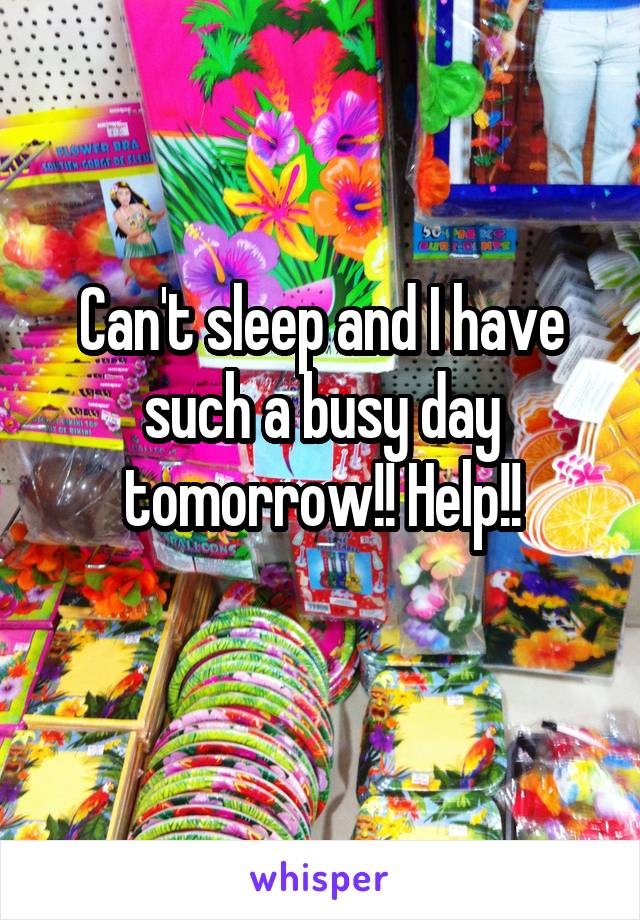 Can't sleep and I have such a busy day tomorrow!! Help!!