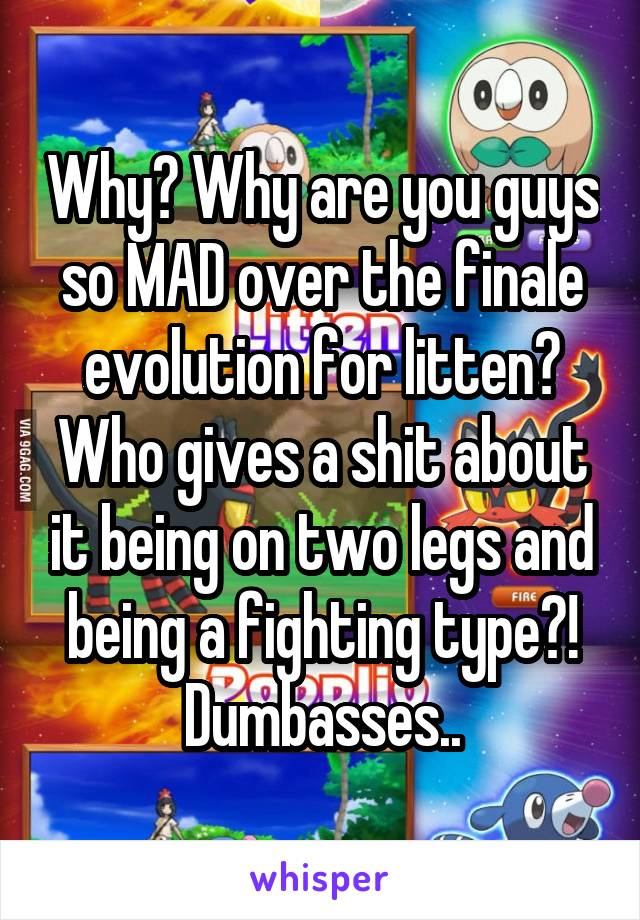 Why? Why are you guys so MAD over the finale evolution for litten? Who gives a shit about it being on two legs and being a fighting type?! Dumbasses..