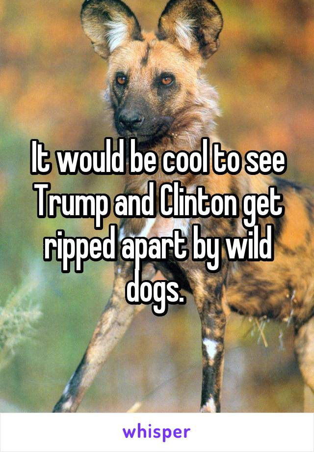 It would be cool to see Trump and Clinton get ripped apart by wild dogs.