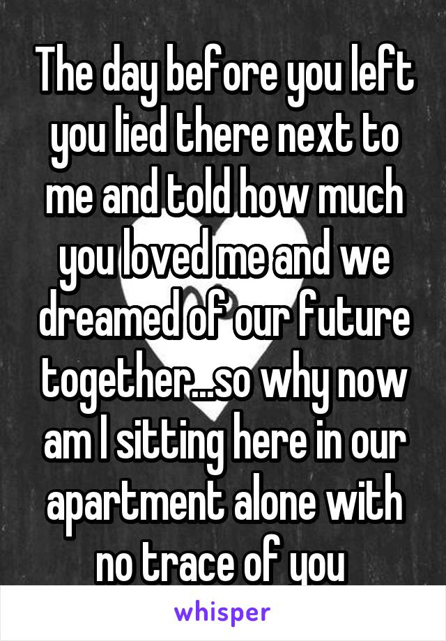 The day before you left you lied there next to me and told how much you loved me and we dreamed of our future together...so why now am I sitting here in our apartment alone with no trace of you