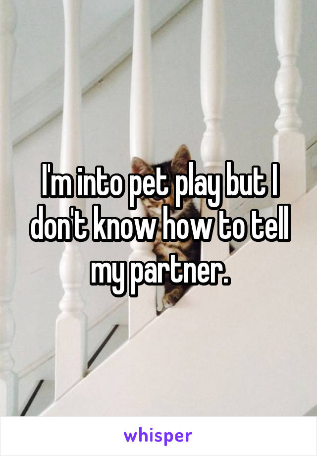 I'm into pet play but I don't know how to tell my partner.