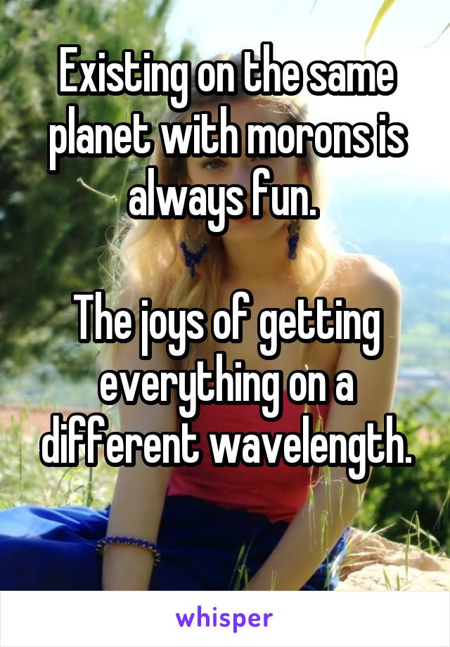 Existing on the same planet with morons is always fun.   The joys of getting everything on a different wavelength.