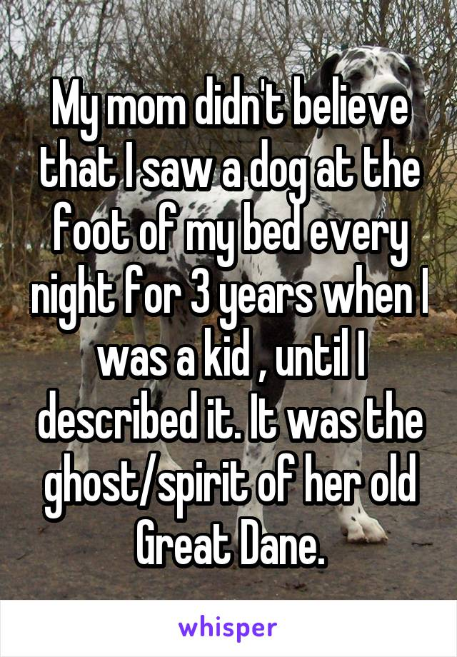My mom didn't believe that I saw a dog at the foot of my bed every night for 3 years when I was a kid , until I described it. It was the ghost/spirit of her old Great Dane.