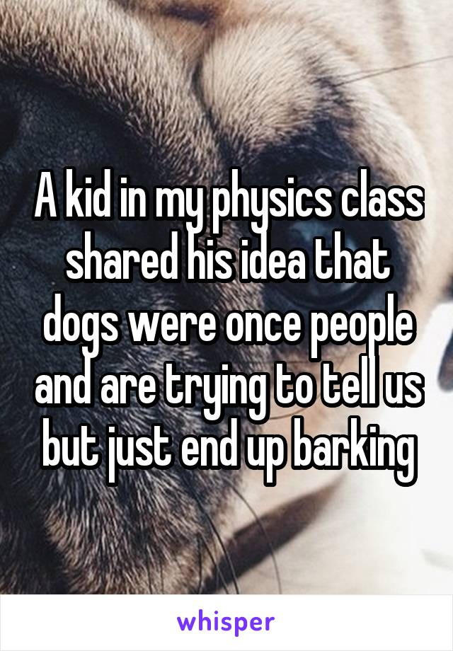 A kid in my physics class shared his idea that dogs were once people and are trying to tell us but just end up barking