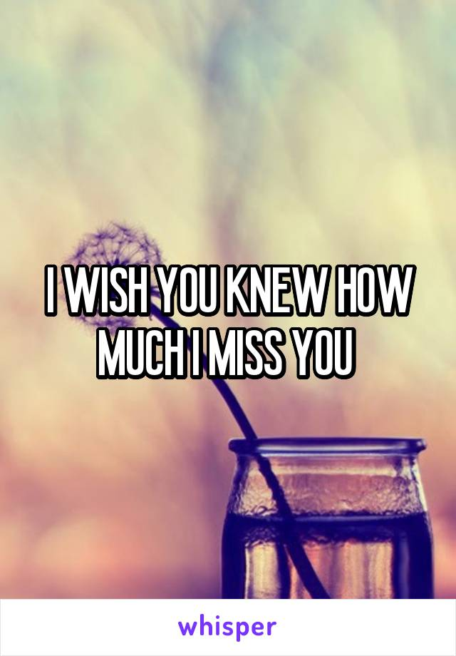 I WISH YOU KNEW HOW MUCH I MISS YOU