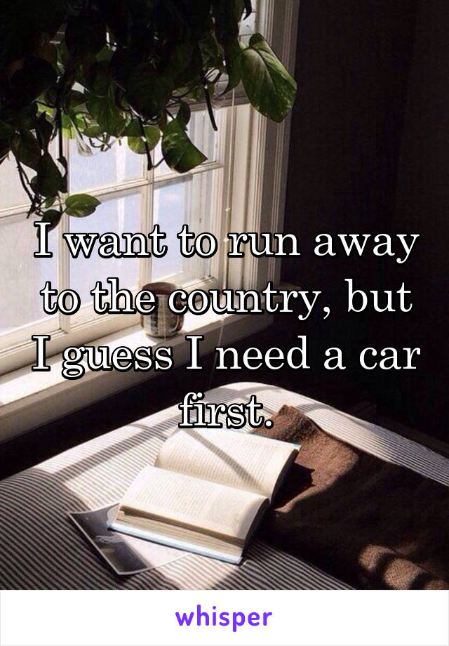 I want to run away to the country, but I guess I need a car first.