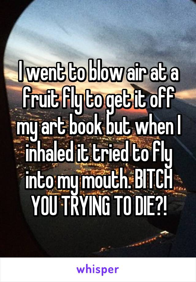 I went to blow air at a fruit fly to get it off my art book but when I inhaled it tried to fly into my mouth. BITCH YOU TRYING TO DIE?!