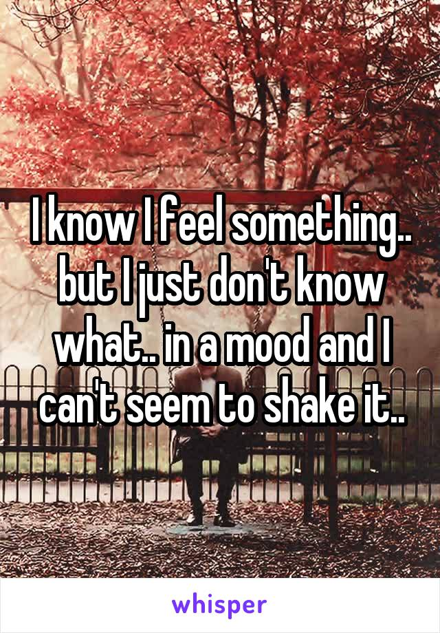 I know I feel something.. but I just don't know what.. in a mood and I can't seem to shake it..