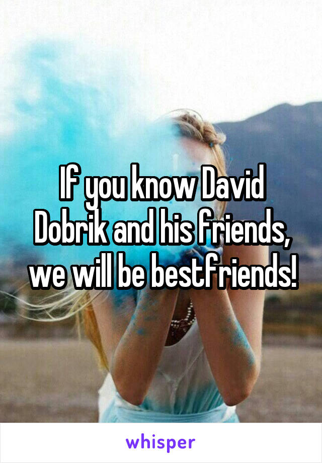 If you know David Dobrik and his friends, we will be bestfriends!