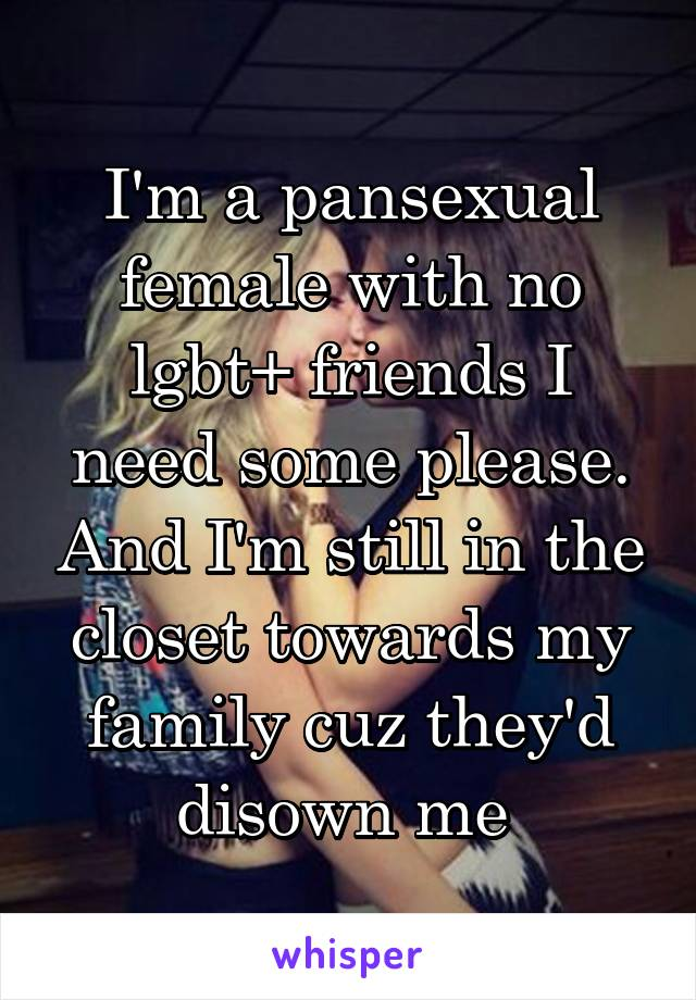 I'm a pansexual female with no lgbt+ friends I need some please. And I'm still in the closet towards my family cuz they'd disown me