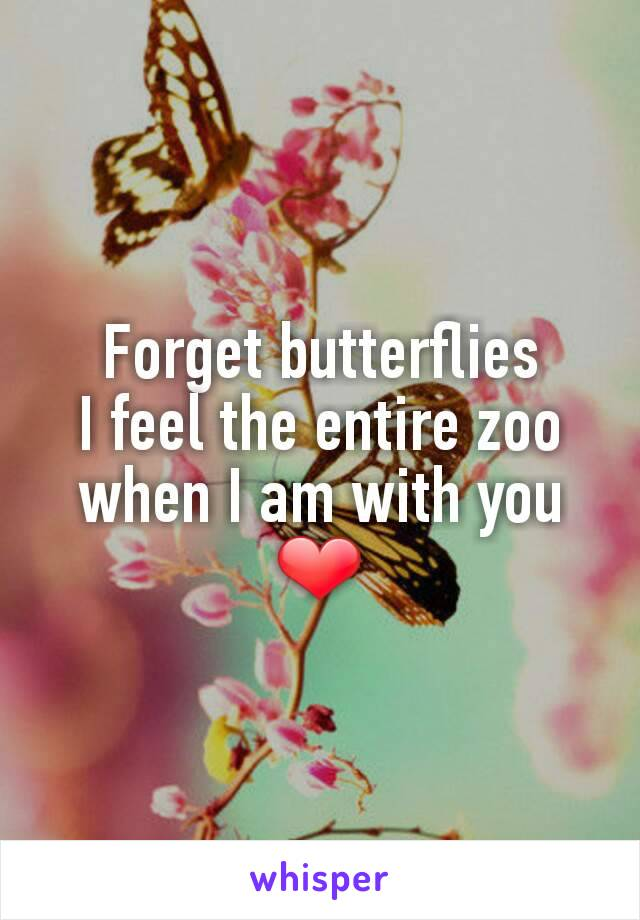 Forget butterflies I feel the entire zoo when I am with you ❤️