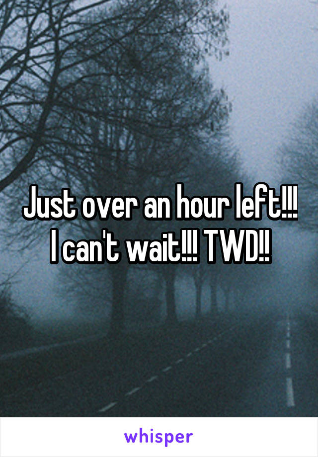 Just over an hour left!!! I can't wait!!! TWD!!