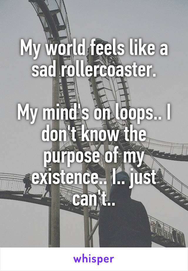 My world feels like a sad rollercoaster.  My mind's on loops.. I don't know the purpose of my existence.. I.. just can't..