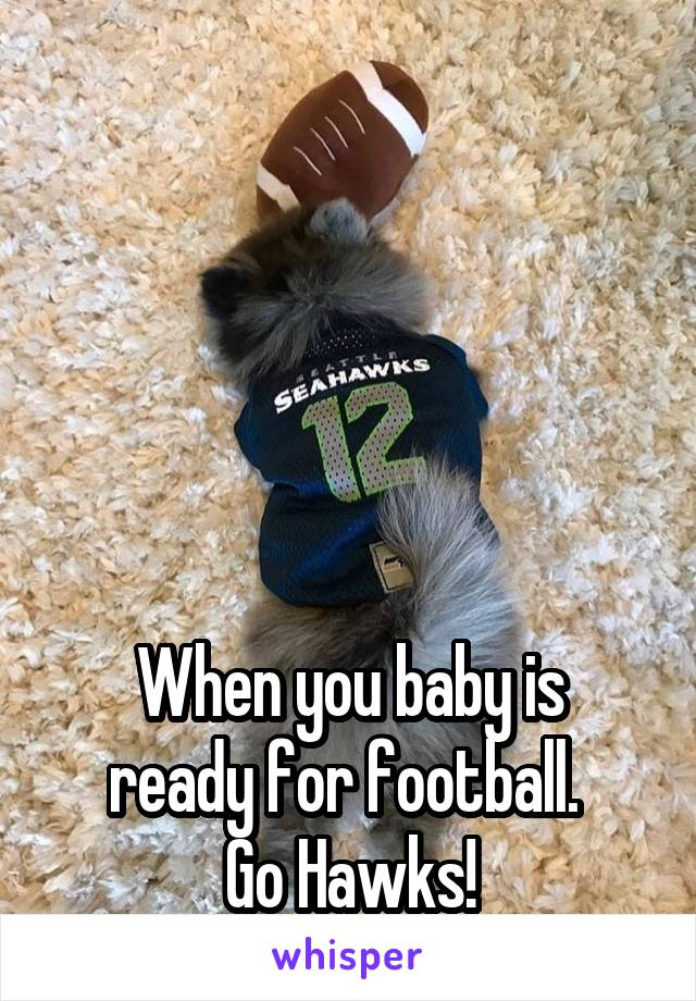 When you baby is ready for football.  Go Hawks!