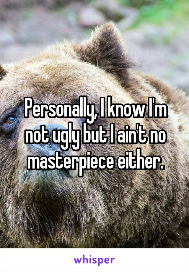 Personally, I know I'm not ugly but I ain't no masterpiece either.