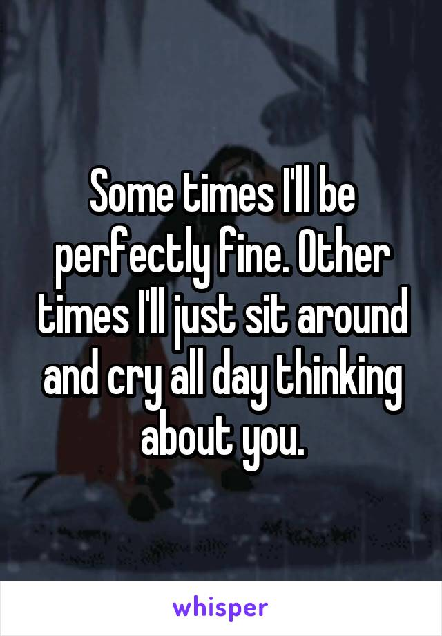 Some times I'll be perfectly fine. Other times I'll just sit around and cry all day thinking about you.