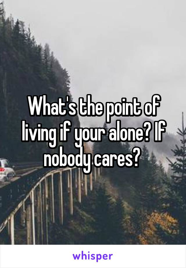 What's the point of living if your alone? If nobody cares?