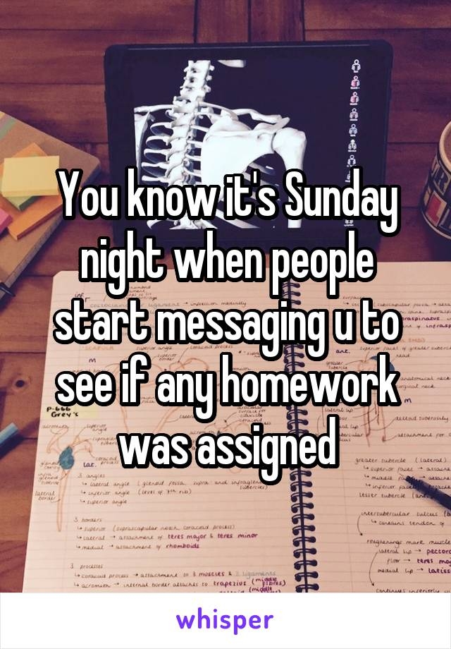 You know it's Sunday night when people start messaging u to see if any homework was assigned