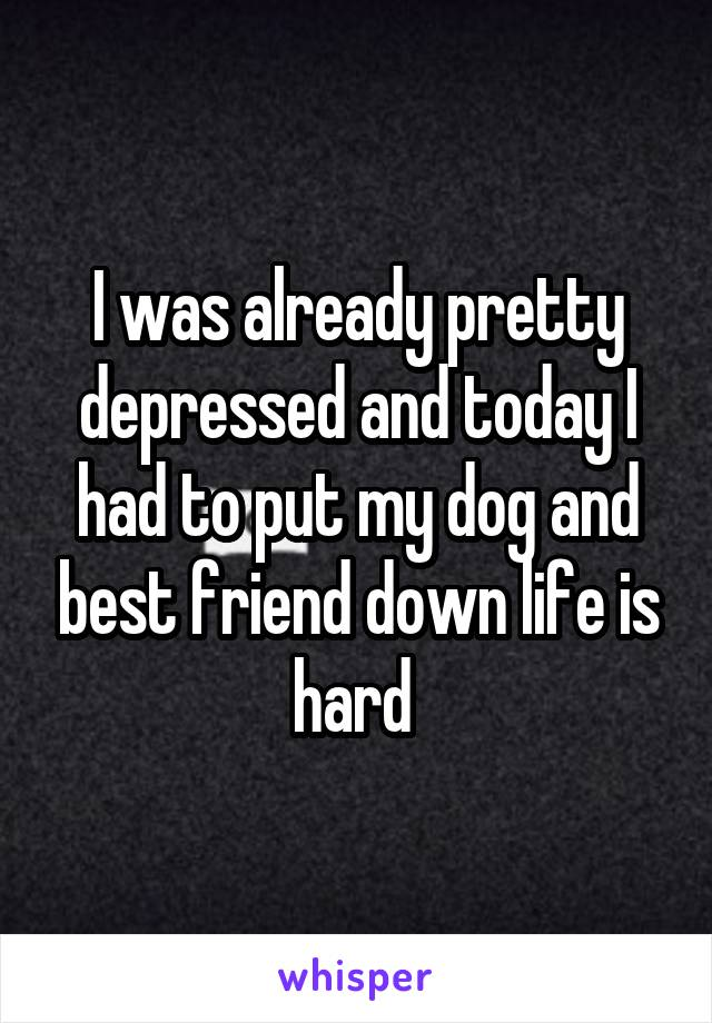 I was already pretty depressed and today I had to put my dog and best friend down life is hard